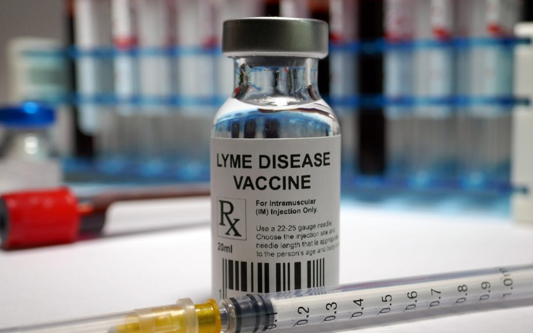 Lyme Disease Vaccine on the Horizon for 2020