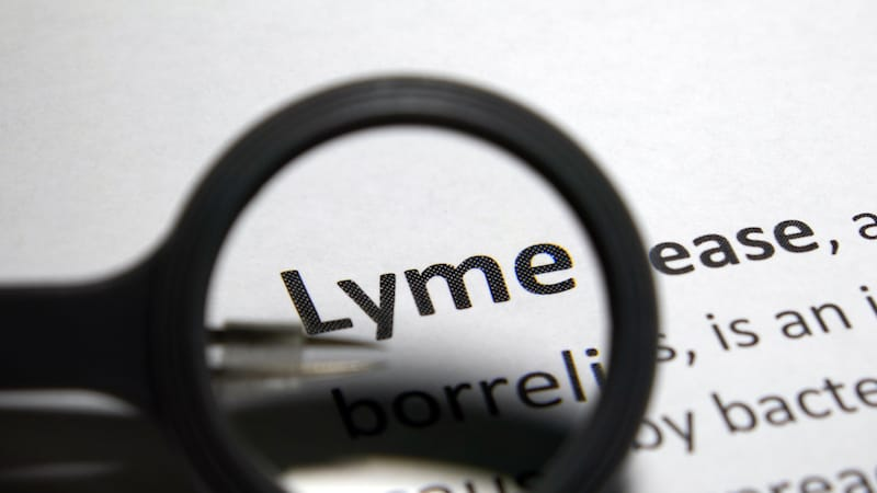 What Are the Three Stages of Lyme Disease?