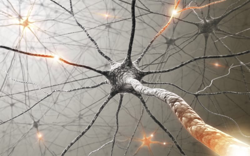 Neurologic Lyme Disease Symptoms and Treatment - Lyme Mexico Clinic