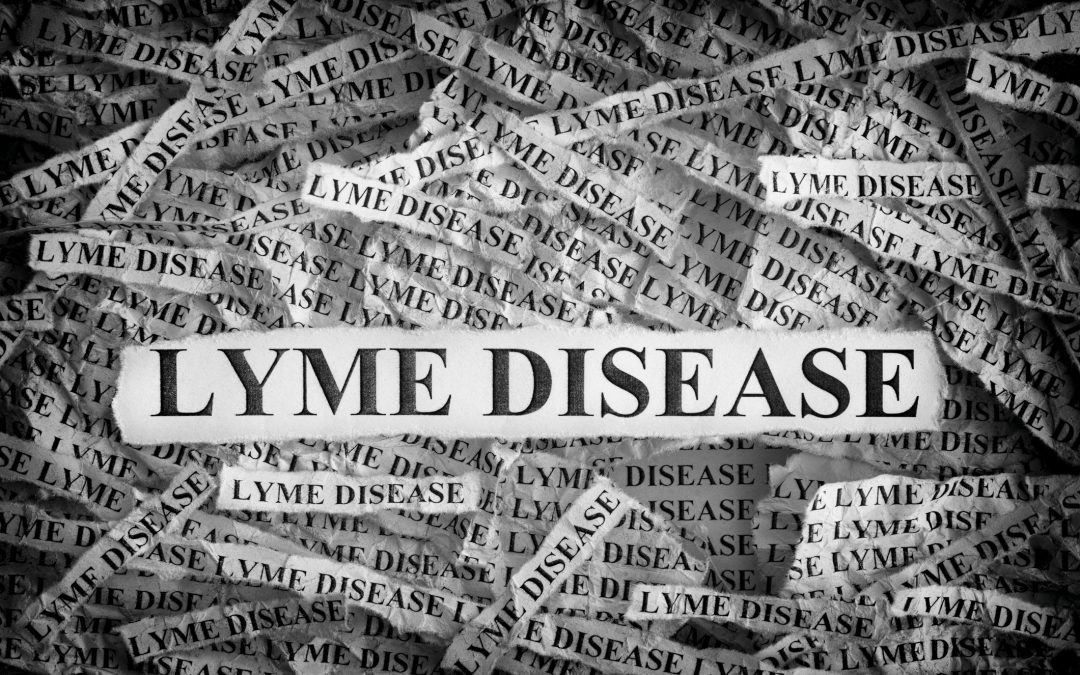 Top 10 Medical Controversies That Affect Lyme Patients