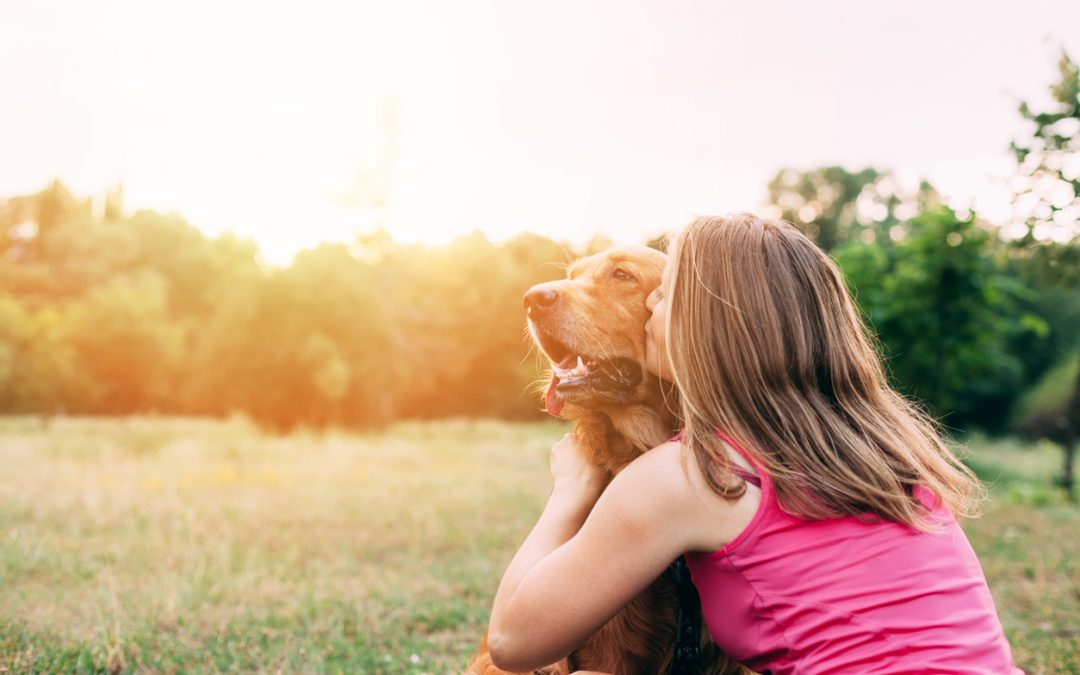 Lyme Disease in Dogs: What Pet Owners Should Know